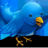 twitterific-icon
