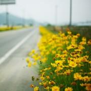 roadside_ipadr